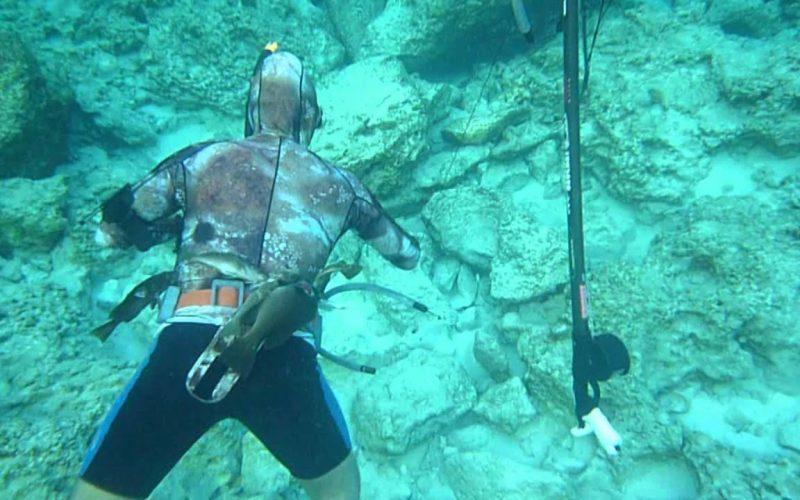 الصيد بالهاربون في مصر وما هي الأدوات المستخدمة في الصيد