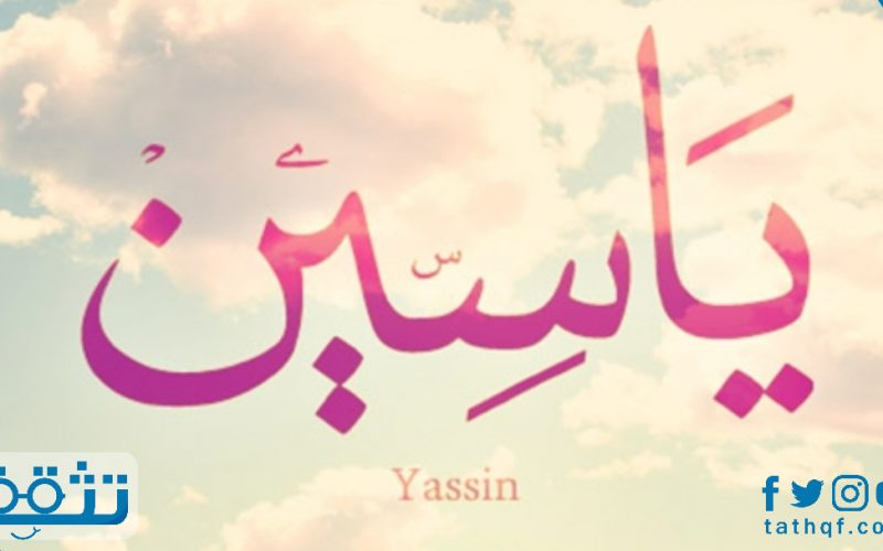 معنى اسم ياسين في القاموس والمعجم وطريقة كتابته مزخرف