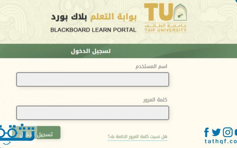 البلاك بورد جامعه الطائف .. خطوات تسجيل دخول الطلبة على بلاك بورد الجامعة