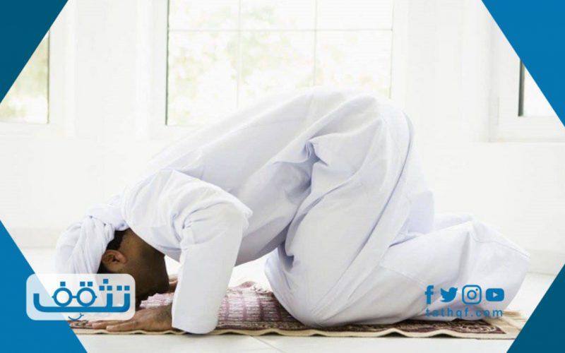 كم عدد السجدات في القران الكريم مع ذكر مواضعها