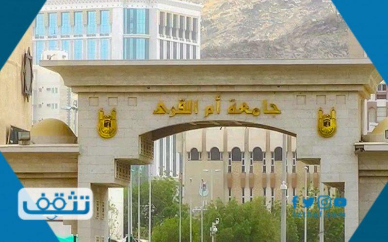 تخصصات جامعة ام القرى بنات والبرامج المتاحة